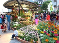 Nguyen Hue Flower Street Festival welcomes Lunar New Year